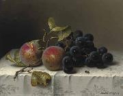 Johann Wilhelm Preyer Prunes and grapes on a damast tablecloth oil