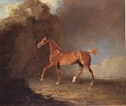 Benjamin Marshall A Golden Chestnut Racehorse by a Rock Formation With a Town Beyond oil painting picture wholesale
