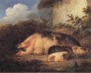 George Morland A Sow and Her Piglets oil painting picture wholesale