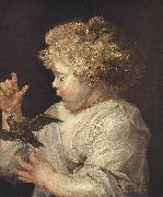 RUBENS, Pieter Pauwel Boy with Bird oil painting picture wholesale