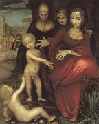 YANEZ DE LA ALMEDINA, Fernando St.Anne,the Virgin;St Elizabeth,St,john,and the Christ Child oil painting artist