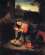 Correggio Madonna worshipping the Child oil painting picture wholesale