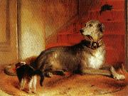 Sir edwin henry landseer,R.A. Lady Blessingham's Dog oil painting picture wholesale