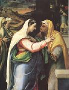 Sebastiano del Piombo The Visitation (mk05) oil painting picture wholesale