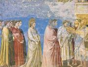 GIOTTO di Bondone The Marriage Procession of the Virgin (mk08) oil