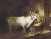 Jean Honore Fragonard The White Bull (mk05) oil painting picture wholesale