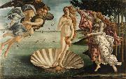 Sandro Botticelli The Birth of Venus (mk08) oil painting picture wholesale