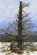 Caspar David Friedrich Oak Tree in the Snow (mk10) oil painting reproduction