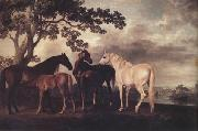 George Stubbs Mares and Foais in a Landscape (nn03) oil painting picture wholesale