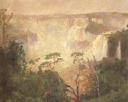Pedro Blanes Cataracts of the Iguazu (nn02) oil painting artist