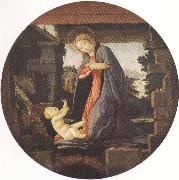 Sandro Botticelli Madonna in Adoration of the Christ Child (mk36) oil painting picture wholesale