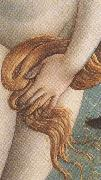 Sandro Botticelli The Birth of Venus (mk36) oil painting picture wholesale