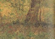 Vincent Van Gogh Undergrowth (nn04) oil painting picture wholesale