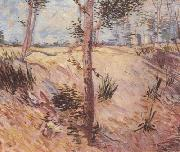 Vincent Van Gogh Trees in a Field on a Sunny Day (nn04) oil painting picture wholesale
