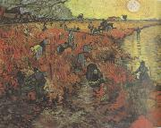Vincent Van Gogh The Red Vineyard (nn04) oil painting picture wholesale