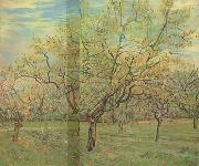 Vincent Van Gogh The White Orchard (nn04) oil painting picture wholesale