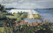 Winslow Homer Flower Garden and Bungalow,Bermuda (mk44) oil painting picture wholesale