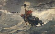Winslow Homer The Life Line (mk44) oil painting picture wholesale