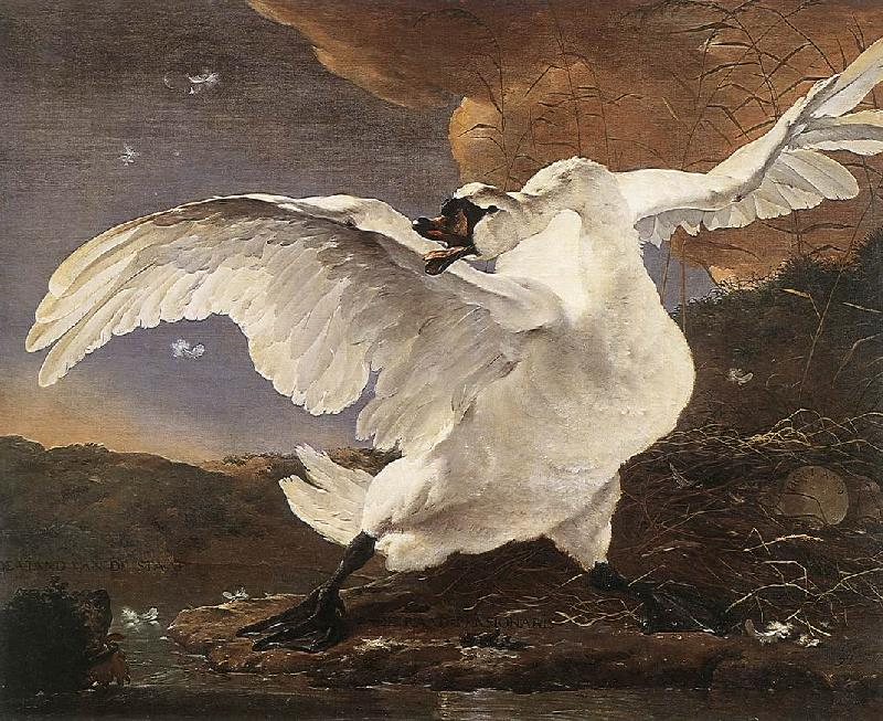 ASSELYN, Jan The Threatened Swan France oil painting art