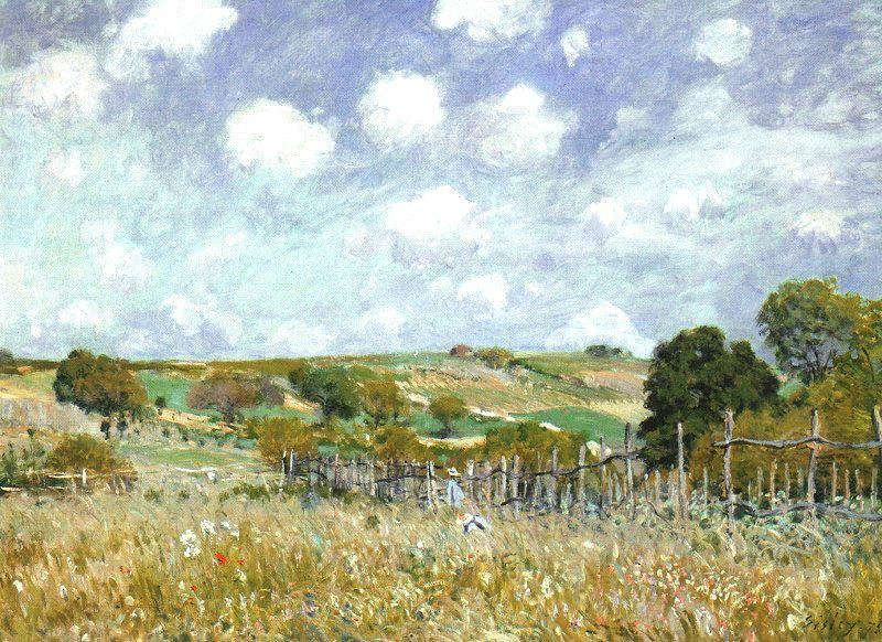 Alfred Sisley Meadow France oil painting art