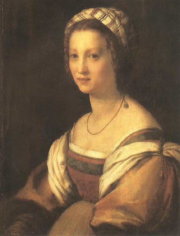 Andrea del Sarto Portrait of the Artist s Wife France oil painting art
