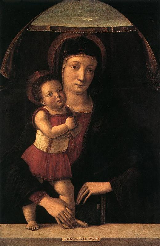 BELLINI, Giovanni Madonna with Child lll France oil painting art