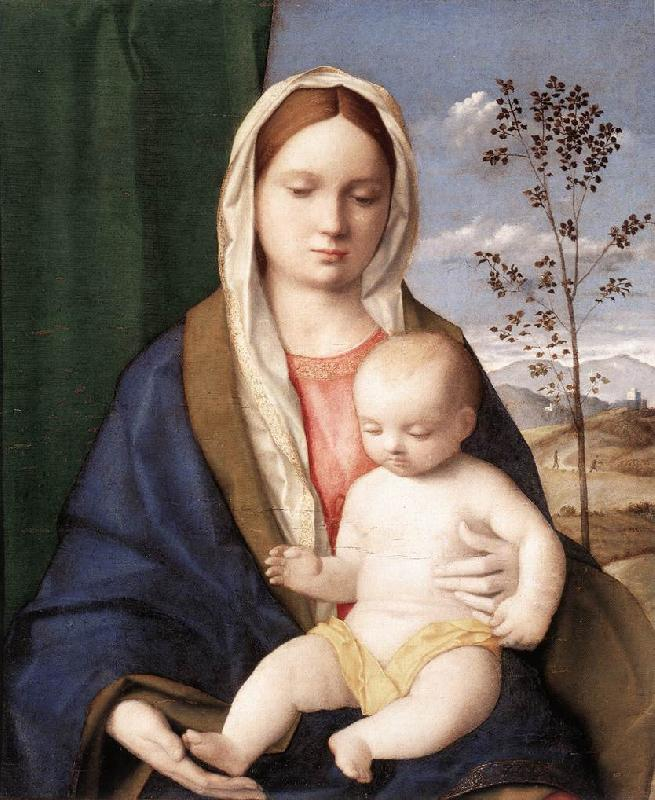BELLINI, Giovanni Madonna and Child mmmnh France oil painting art