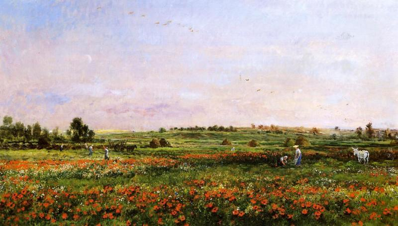 Charles-Francois Daubigny Fields in the Month of June oil painting image
