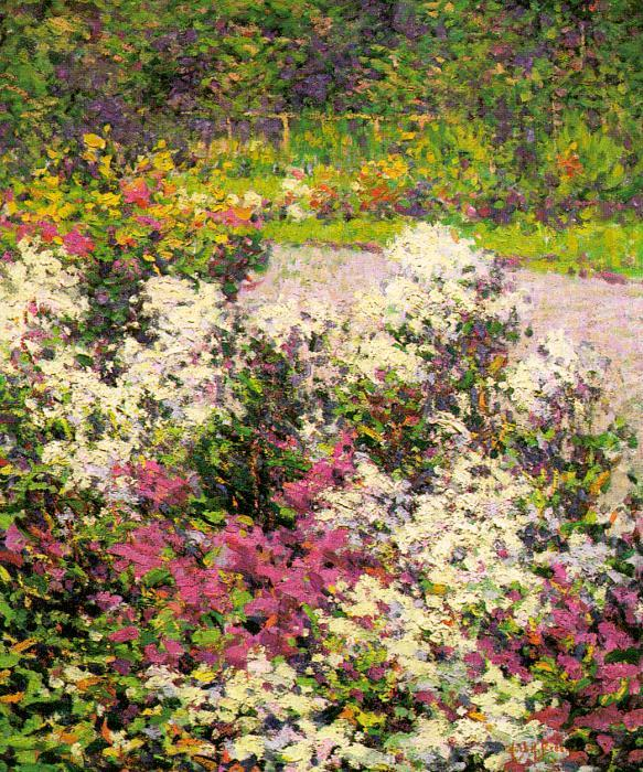 Hugh Henry Breckenridge White Phlox oil painting image
