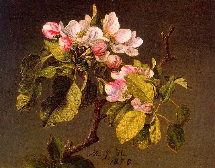Martin Johnson Heade Apple Blossoms France oil painting art
