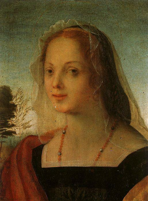 Rosso Fiorentino Portrait of a Young Woman France oil painting art