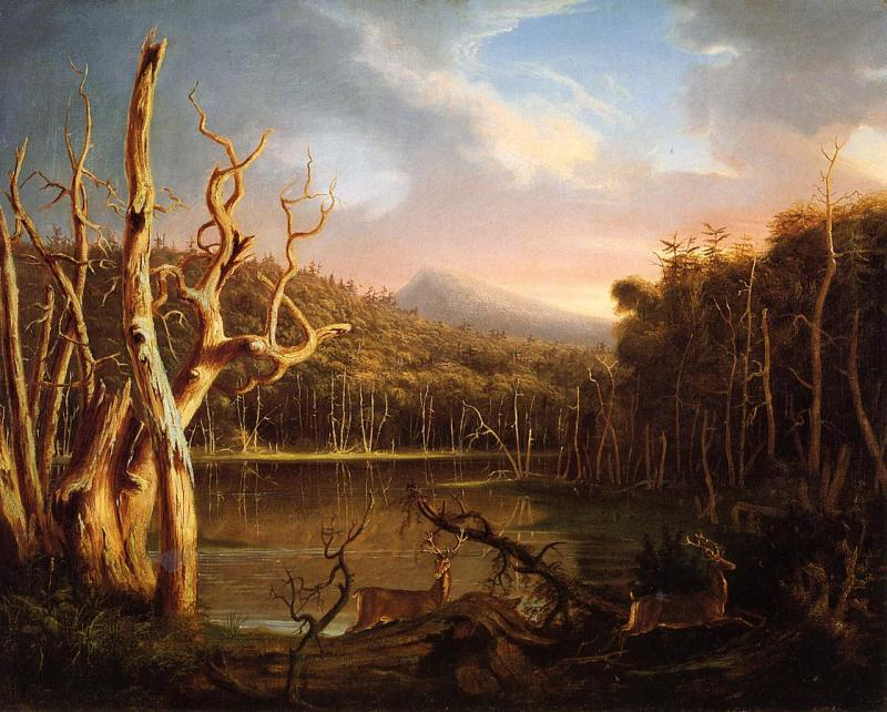 Thomas Cole Lake with Dead Trees oil painting image