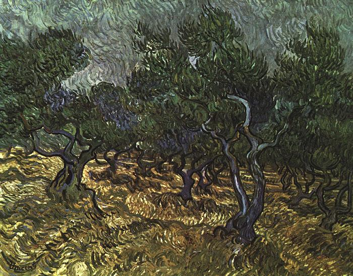 Vincent Van Gogh The Olive Grove oil painting image