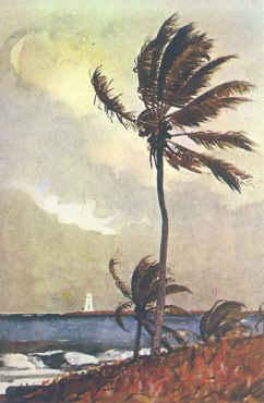 Winslow Homer Palm Tree, Nassau France oil painting art