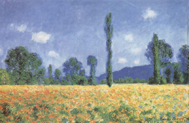 Claude Monet Poppy Field oil painting picture