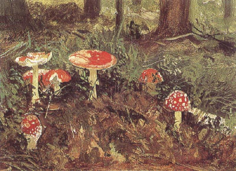 Ivan Shishkin Fly-Agarics,Study oil painting picture
