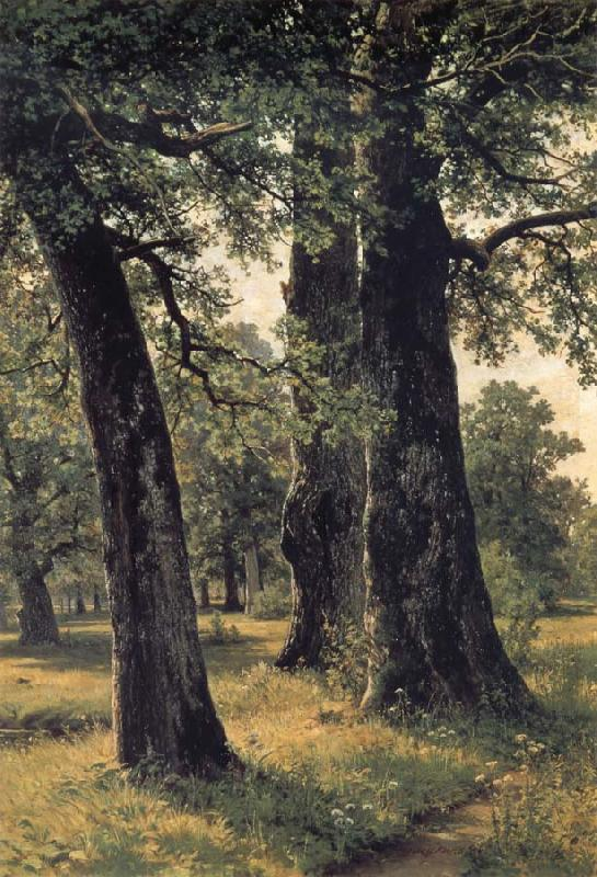 Ivan Shishkin Oak oil painting picture