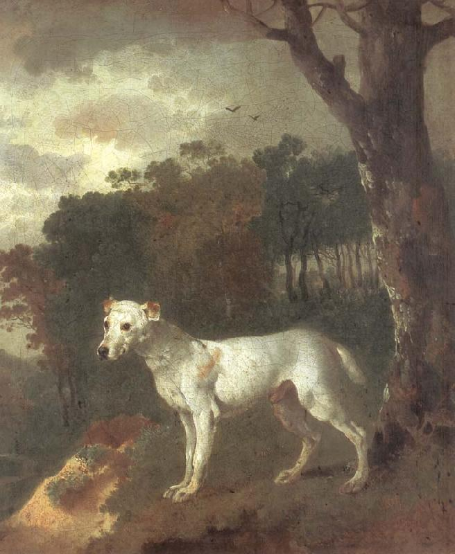 Thomas Gainsborough Bumper,a Bull Terrier oil painting image