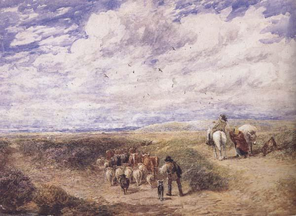 David Cox Keep the Left Road (mk47) oil painting image