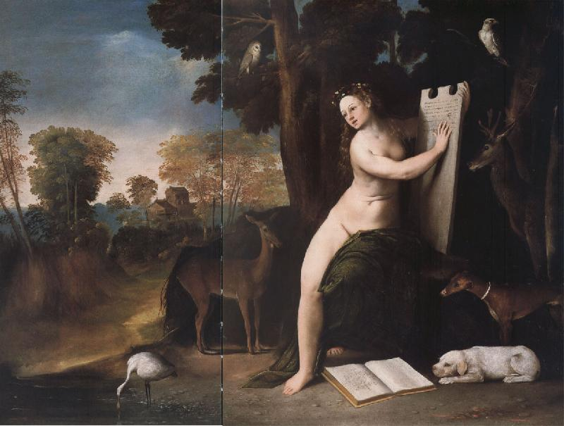 Dosso Dossi circe oil painting image