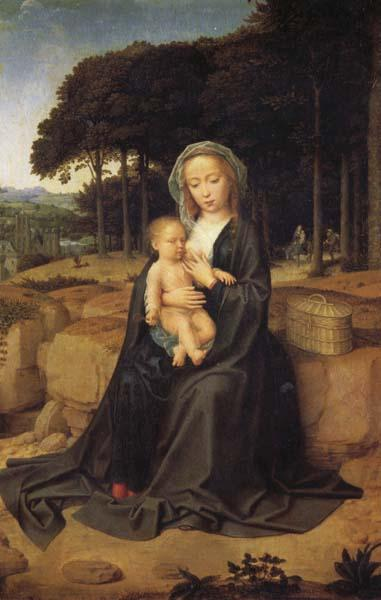 Gerard David Rest on the Flight into Egypt oil painting image