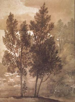 Claude Lorrain Trees (mk17) oil painting image